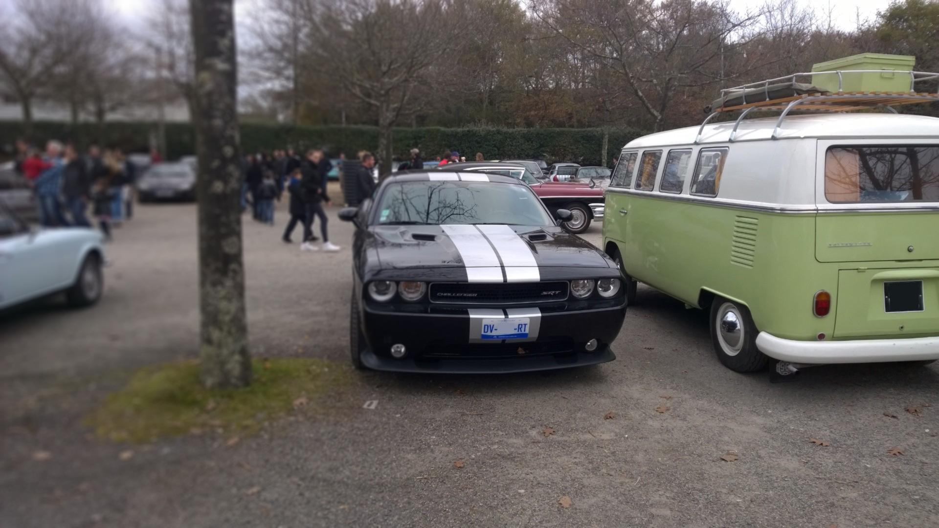 DM photo - Dodge Challenger SRT8 - arrière / rear - Ouest Motors Festival - 2015 - Lorient
