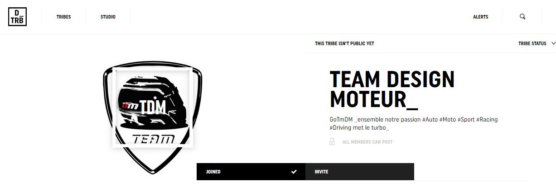 DriveTrive - homepage - Team DESIGNMOTEUR