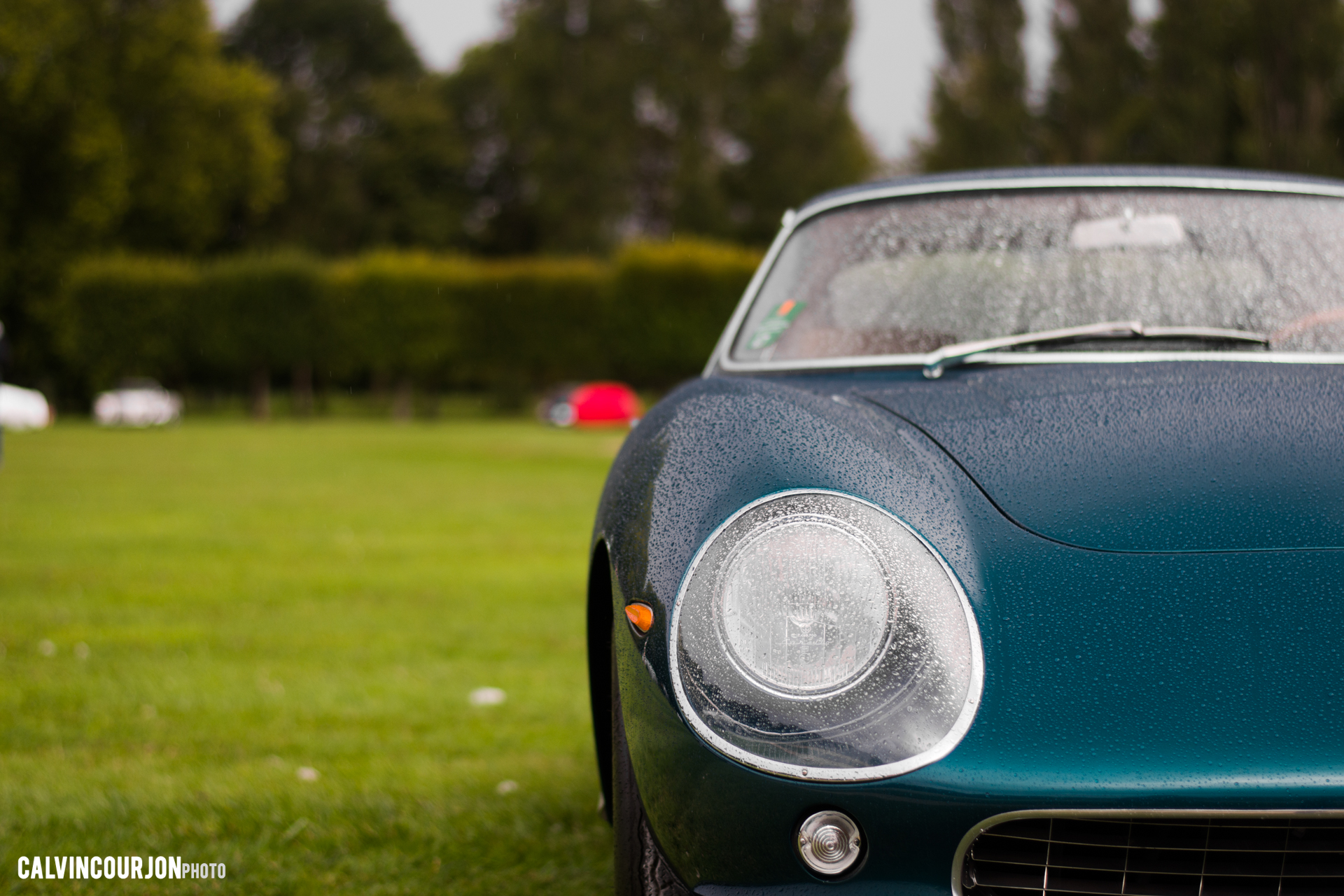 Le regard de Ferrari - Chantilly 2015 – photo Calvin Courjon