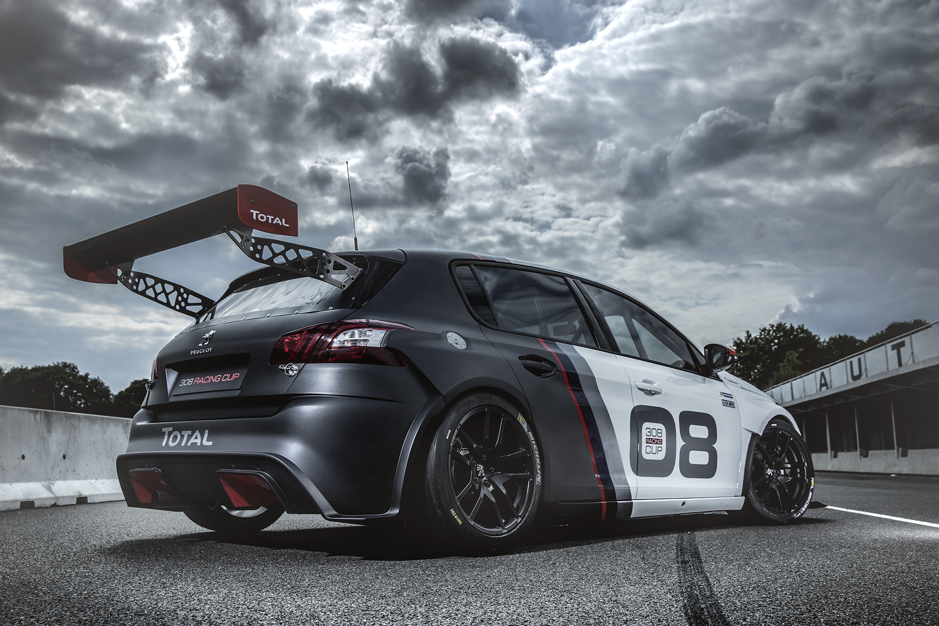 Peugeot 308 Racing Cup - 2015 - profil arrière / rear side-face