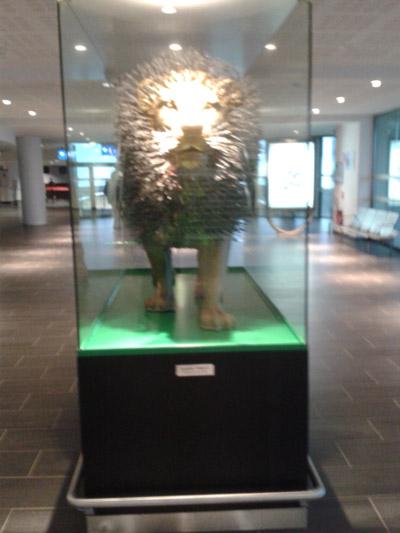 lion-lyon-arrivee