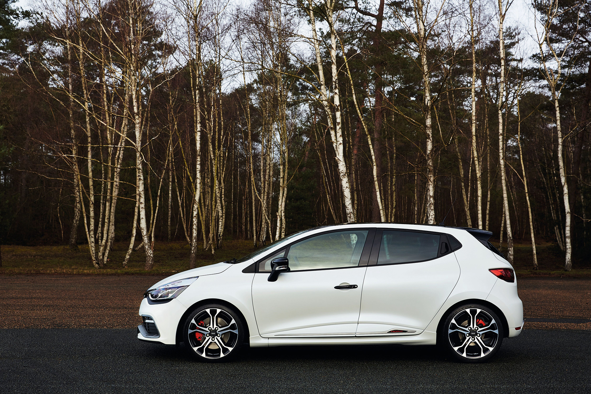 Renault Clio 4 R.S. 220 Trophy - 2015 - profil / side-face